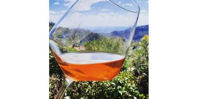 Gocce di Natura: Gli Orange Wines